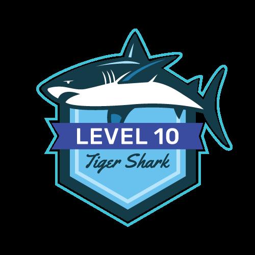 Level 10 - Tiger Shark