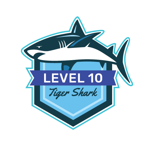 Level 10 - Tiger Shark