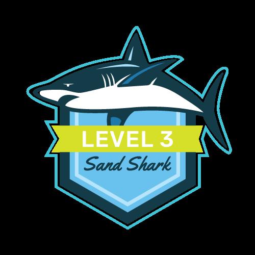 Level 3 - Sand Shark