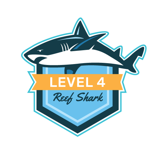 Level 4 - Reef Shark