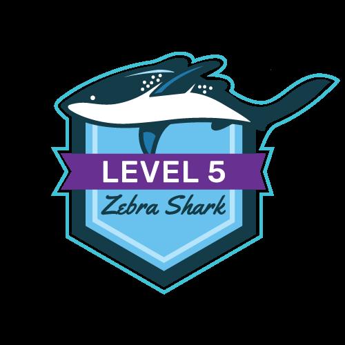 Level 5 - Zebra Shark
