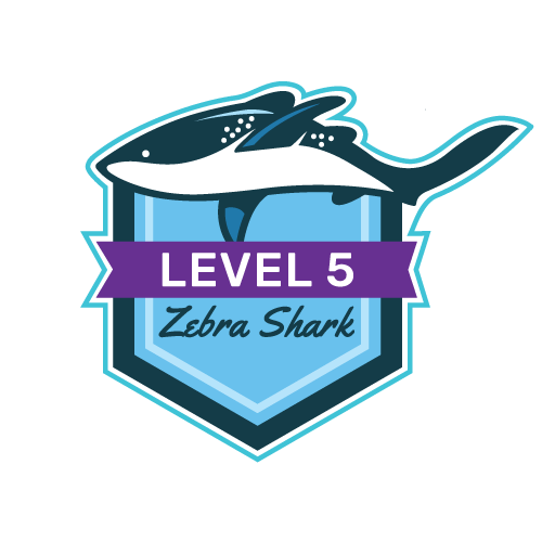 Level 5 - Zebra Shark