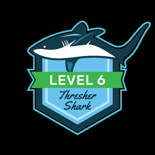 Level 6 - Thresher Shark