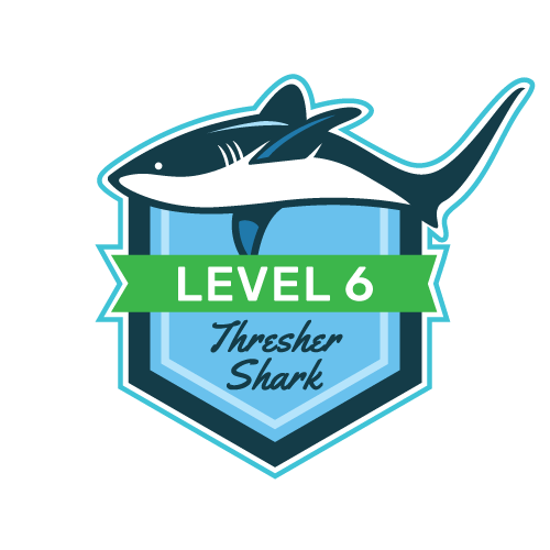 Level 6 - Thresher Shark