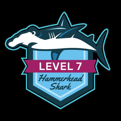 Level 7 - Hammerhead Shark