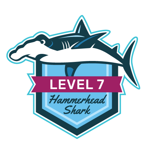 Level 7 - Hammerhead Shark