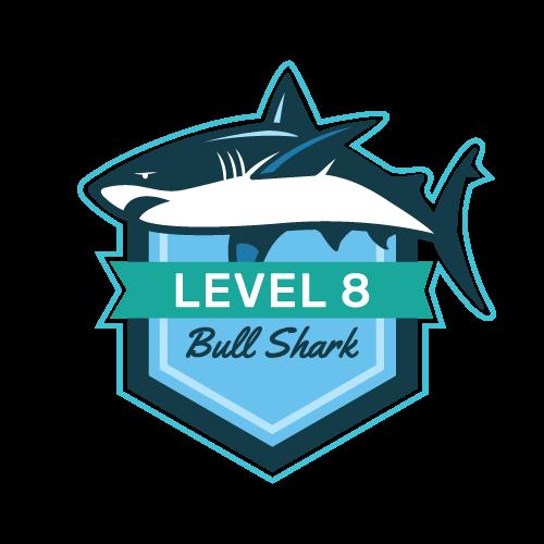 Level 8 - Bull Shark