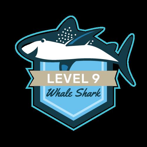 Level 9 - Whale Shark